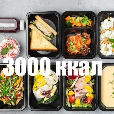 Спортивное питание 3000 ккал от «Performance food»